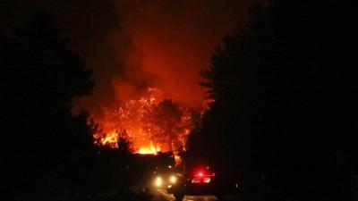Bakanlık yangınlarla ilgili son durumu açıkladı